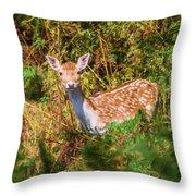 Fallow Deer 2 Throw Pillow