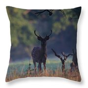 Fallow Deer Stag Throw Pillow