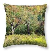 Fallow Meadow Throw Pillow