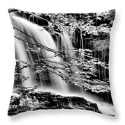 Falls And Trees Throw Pillow