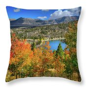 Fall's Finery At Rock Creek Lake Throw Pillow