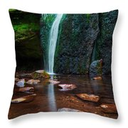 Falls In Bluff Country Throw Pillow