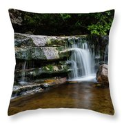 Falls Of Peterskill In Spring I - 2018 Throw Pillow