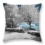 Falls Of The Ohio State Park Throw Pillow