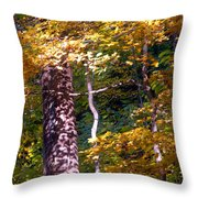 Falls Splendor Throw Pillow