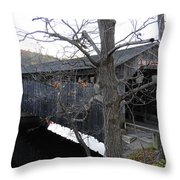 Fallsburg Throw Pillow