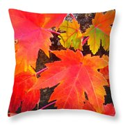 Falltime ...  Throw Pillow