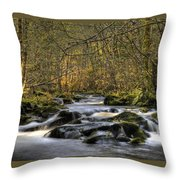Falltime In Skamania County Throw Pillow