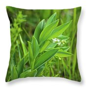 False Solomon Seal Throw Pillow