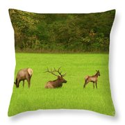 Family Get Together Throw Pillow