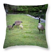 Family Of Geese Throw Pillow