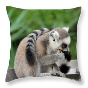 Family Of Lemurs Throw Pillow