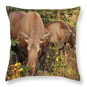 Family Picnic Throw Pillow