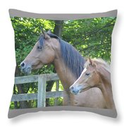 Family Ties Throw Pillow