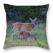 Family Visit Throw Pillow