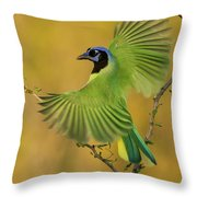 Fan Dancer Throw Pillow