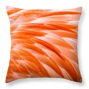 Fan Of Feathers Throw Pillow