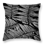 Fan Of Fronds Throw Pillow