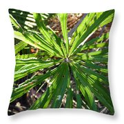 Fan Of Leaves Throw Pillow