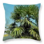 Fan Palm Tree Throw Pillow