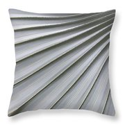 Fanning Out Throw Pillow