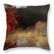 Fantastic Foggy River With Fresh Green Grass In The Sunlight. Throw Pillow
