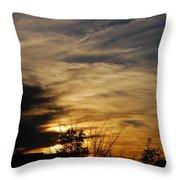 Fantastic Sunet Throw Pillow
