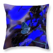 Fantasy Blue Butterfly Throw Pillow