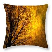 Fantasy Dawn Throw Pillow