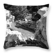 Fantasyland  Throw Pillow