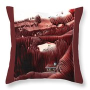 Far From The Road Throw Pillow