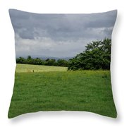 Faraway Rain. Throw Pillow