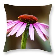 Faraway Thoughts Throw Pillow