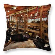 Farm - Cow - Checking Out The Ladies Throw Pillow