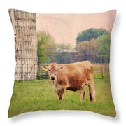 Farm Dreamscape Throw Pillow
