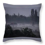 Farm In Fog Throw Pillow