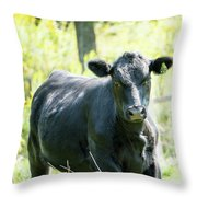 Farm Life #1 Throw Pillow