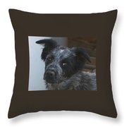 Farm Puppy  Throw Pillow