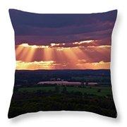 Farm Rays Throw Pillow
