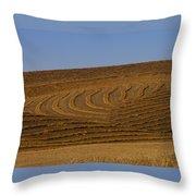 Farmers Art By Jean Noren Throw Pillow