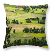Farmers Valley Throw Pillow