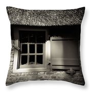 Farmhouse Window Throw Pillow