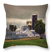Farming Before The Storm Finger Lakes New York 04 Throw Pillow