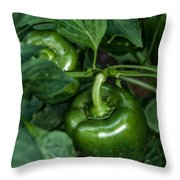Farming Green Peppers Throw Pillow
