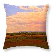 Farmland In Gettysburg Throw Pillow