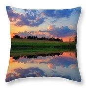 Farmpond 2 Throw Pillow