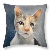 Farmyard Cat Throw Pillow