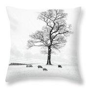 Farndale Winter Throw Pillow