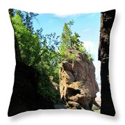 Fascinating Nature Throw Pillow