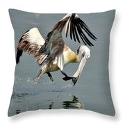 Fast And Focused   Throw Pillow